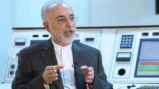 Photo of Iran to stop Additional Protocol if JCPOA nixed: Salehi
