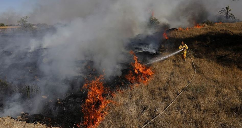 Photo of Balloons fired from besieged Gaza spark 17 fires in zionist Israeli location