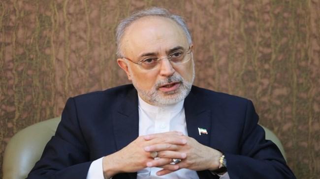 Photo of Salehi: Quitting JCPOA Iran's final scenario