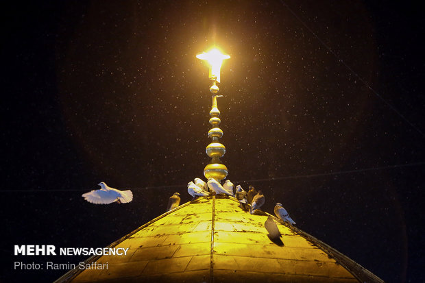 Photo of PHOTOS: Hundreds of thousands of people gather for the martyrdom anniv. of 8th Imam Ali ibn Musa al-Reza in Mashhad