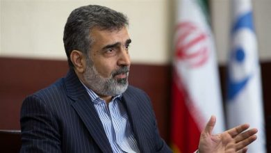 Photo of Iran to unveil 112 new nuclear achievements in April: AEOI