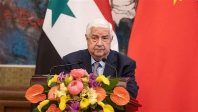 Photo of Syria does not want fighting with Turkey: Muallem