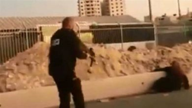 Photo of Amnesty slams rabid zionist regime's killing of Palestinian woman