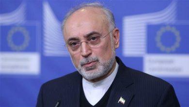 Photo of Intl. community must slam US' 'destructive' behavior, economic terrorism: Iran