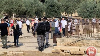 Photo of Over 750 zionist settlers violate Holy Aqsa Mosque protected by zionist forces