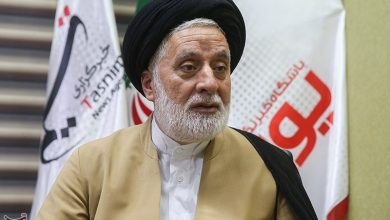 Photo of Prominent Iranian Cleric Hails Far-Reaching Effects of Arbaeen on Nigerian Muslims