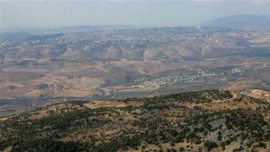 Photo of Lebanese drone entered Israel's airspace, flew back: Military