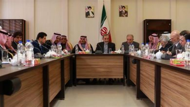 Photo of Leader's aide: Iran opposes any buffer zone in Syria