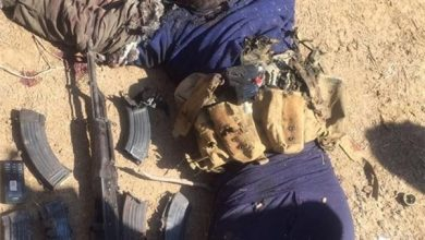 Photo of Over 39 ISIL Terrorists Killed by Iraqi Army in Salahuddin Province