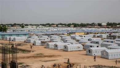 Photo of 30 killed, women and children abducted in Nigeria's Borno