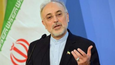 Photo of Iran Asks IAEA Not to Succumb to Pressures by Enemy Spy Agencies