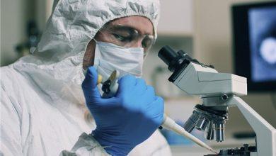 Photo of Iranian Scientists Studying Coronavirus Vaccine by Intracellular Manipulation