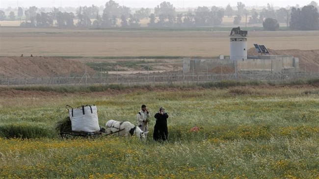 Photo of Palestinian farmers: Israeli planes spray Gaza farmlands with toxic herbicides
