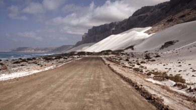 Photo of Saudi-led militants start takeover of Yemen's Socotra after fierce infighting