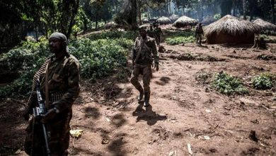 Photo of Takfiri terrorists kill 40 civilians in DR Congo