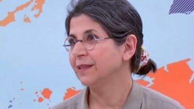 Photo of Iran censures France's 'interventionist' attitude on jailed academic