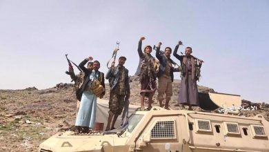 Photo of Yemeni forces score major territorial gains in Bayda, Ma'rib provinces