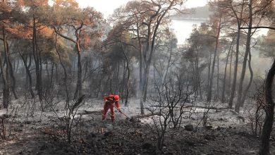 Photo of Another suspected forest fire in Turkey; burns 5 hectares of land on Heybeliada island