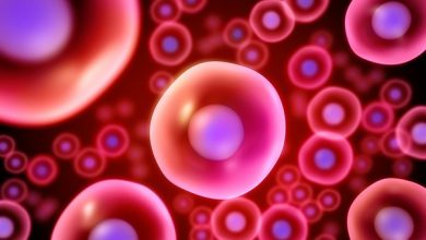 Photo of Iran Ends 1st Phase of Stem-Cell Therapy for Coronavirus Patients