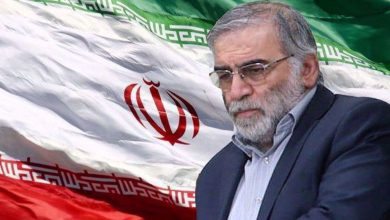 Photo of Eminent physicist assassination aims to hinder Iran's strategic research, former AEOI chief