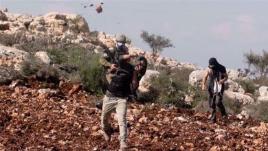 Photo of Palestinian ministry urges UN Security Council to act against 'israeli' settler violence