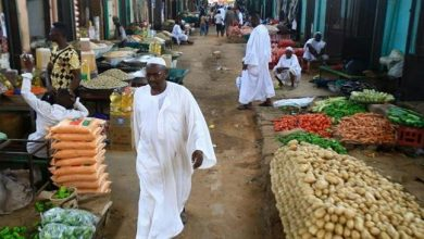 Photo of World food price index jumps in Nov. to almost 6-year high: FAO