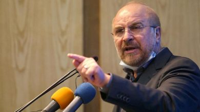 Photo of Speaker: Lifting of Sanctions Important Not Washington's Return to JCPOA